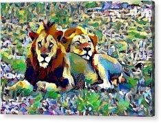 Lion Buddies Acrylic Print