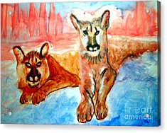 Lion Cubs Of Arizona Acrylic Print