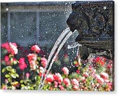 Lion Fountain In Profile Acrylic Print by Carol Groenen