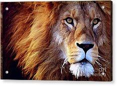 Lion-hearted Acrylic Print