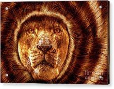 Lion Lady   -1 Acrylic Print