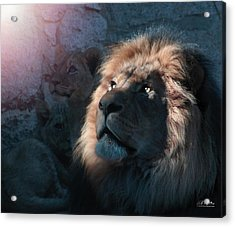 Lion Light Acrylic Print