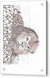 Lion Acrylic Print by Paula Dickerhoff