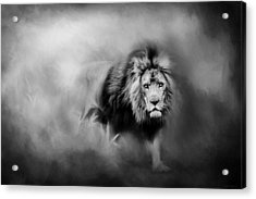 Lion - Pride Of Africa 3 - Tribute To Cecil In Black And White Acrylic Print by Michelle Wrighton