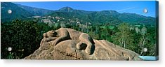 Lion Rock Sculpture, Center For Earth Acrylic Print