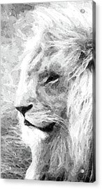 Lion Acrylic Print by Stacey Chiew