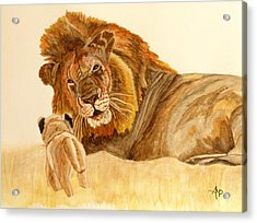 Lion Watercolor Acrylic Print