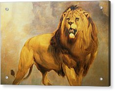 Lion  Acrylic Print by William Huggins