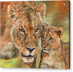 Acrylic Print featuring the painting Lioness And Cub by David Stribbling