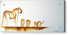 Lioness And Cubs Small - Original Artwork Acrylic Print