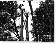 Lions Gate Between The Trees Mono Acrylic Print by John Rizzuto