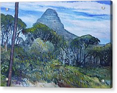 Lions Head Cape Town South Africa 2016 Acrylic Print by Enver Larney