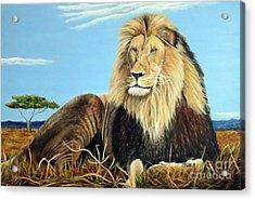 Lions Pride Acrylic Print