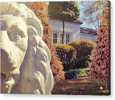 Lions View Of Graceland Acrylic Print by JAMART Photography