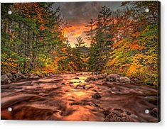 Liquid Gold Of New Hampshire Acrylic Print