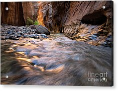 Liquid Gold Utah Adventure Landscape Photography By Kaylyn Franks Acrylic Print