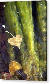 Liquid Leaves 1 Acrylic Print