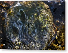 Liquid Mystery Acrylic Print by Matthew Fredricey