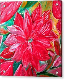Liquid Red Hot Red Poinsettia Acrylic Print