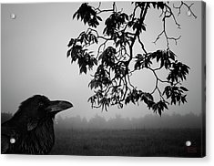 Listening To The Leaves Acrylic Print by Dave Gordon