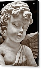 Little Angel - Sepia Acrylic Print by Christopher Holmes