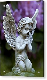 Acrylic Print featuring the photograph Little Angel by Marc Huebner