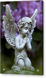 Little Angel Acrylic Print by Marc Huebner