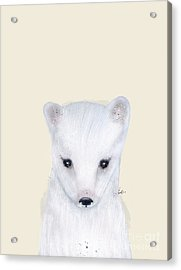 Acrylic Print featuring the painting Little Arctic Fox by Bri B