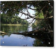 Little Ausable River Acrylic Print