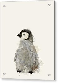 Little Baby Penguin Acrylic Print