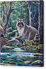 Little Bandit Acrylic Print by Gail Butler