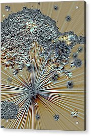 Acrylic Print featuring the digital art little Big Bang by Sherri  Of Palm Springs