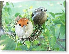 Little Birds 1 Acrylic Print