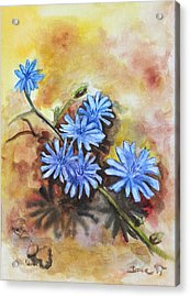 Little Blues Acrylic Print by Jana Goode