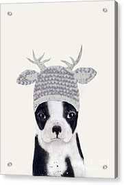 Acrylic Print featuring the painting Little Boston Deer by Bri B