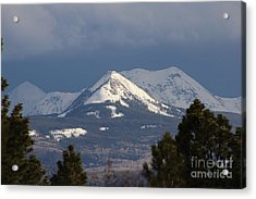 Little Cone Peak Colorado Acrylic Print