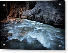 Little Creek Acrylic Print by Edgars Erglis