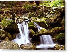 Little Creek Falls Acrylic Print