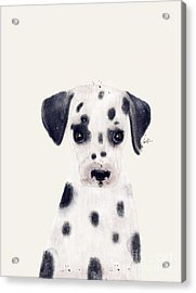 Acrylic Print featuring the painting Little Dalmatian by Bri B