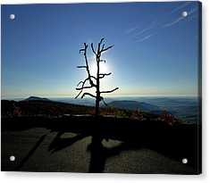 Acrylic Print featuring the photograph Little Devil Stairs Overlook by Robert Geary