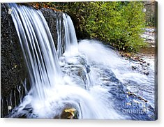 Little Elbow Waterfall And Williams River Acrylic Print by Thomas R Fletcher