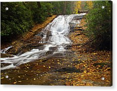 Little Fall Acrylic Print