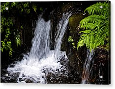 Little Falls Acrylic Print by Christopher Holmes