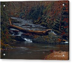 Acrylic Print featuring the photograph Little Falls by Donald C Morgan