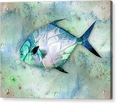 Little Fish Acrylic Print by Anastasiya Malakhova
