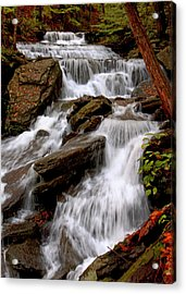 Acrylic Print featuring the photograph Little Four Mile Run Falls by Suzanne Stout