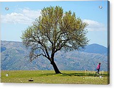Little Girl Walking Past A Tree In Springtime Acrylic Print by Sami Sarkis