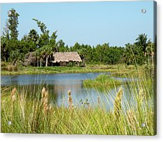 Acrylic Print featuring the photograph Little Grass Shack by Rosalie Scanlon