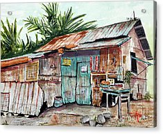 Old Shack Out Back Acrylic Print by Tim Ross