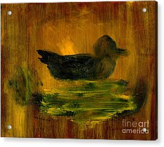 Little Green Mallard Sitting In The Water 4 Acrylic Print by Richard W Linford